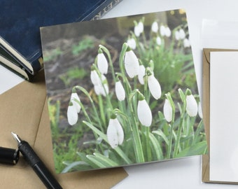 Spring greetings cards, snowdrops, flowers, retro