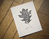 5-Notecard Set: Red Oak L...