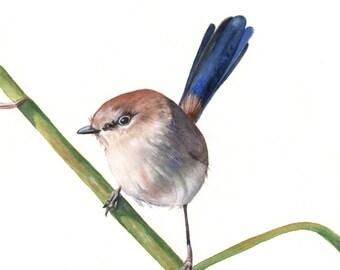 Wren Painting - watercolor bird - print of watercolor painting 5 by 7 print wall art print - bird art - art print - wildlife print