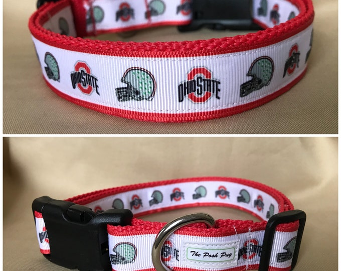 "Handmade White Buckeyes Fan 1"" Adjustable Dog Collar - LARGE"