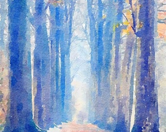 Forest Original Watercolor Brush Illustration Painting