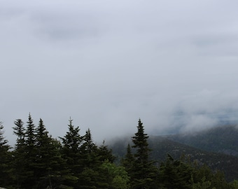 Photography - Maine forrest - Foggy Mountain View