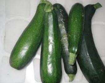 Zucchini Squash Seeds - 'Black Beauty' 25+ seeds
