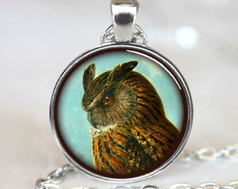 Owl Pendant , Owl Necklace , Owl Jewelry , Brown Owl Pendant, Silver (PD0539)