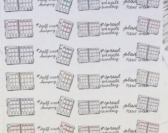 Erin Condren/Happy Planner style Planner Girl, Plan Next Week, Share a Spread Hand Drawn stickers, for Erin Condren Inkwell press, Filofax