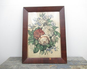 Botanical Print, Antique Framed Flower Wall Art, English Garden, Hummingbird, David Austin Roses