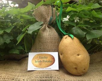 Irish ornament, looks like a real potato. Very cute!