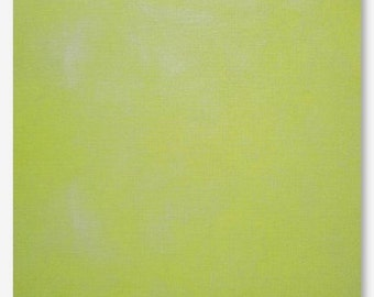 KERMIT hand-dyed cross stitch fabric Picture This Plus PtP 16 ct. Aida 28 count Cashel linen hand embroidery