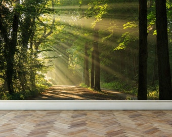 Wall Mural Shining through the Forest Trees, Peel and Stick Repositionable Fabric Wallpaper for Interior Home Decor