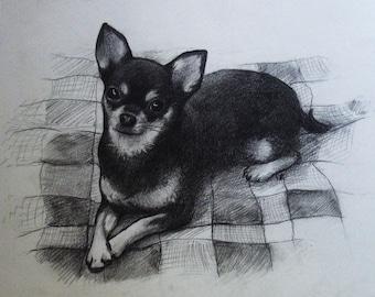 Pet Memorial Custom pet portrait Graphite pet portrait Custom Pet Drawing Portrait pencil Pencil Drawing Custom dog portrait Made to order