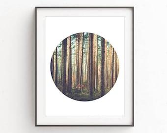 Forest circle print, circle printables, circle art prints, forest printable art, forest wall print, forest wall art, forest art photography