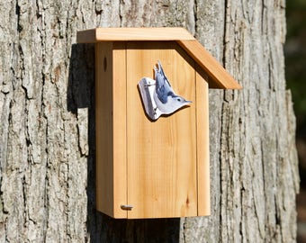 White-breasted Nuthatch Cedar Bird House