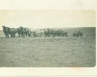 Horse Plow Teams Farmers Working Men Antique RPPC Real Photo Postcard Photograph Black White Photo