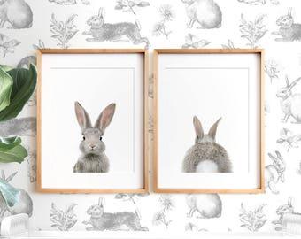 Set of 2 bunny print, PRINTABLE wall art, The Crown Prints, Nursery art, Woodland animals, Nursery art, Baby animal prints, Nursery animals