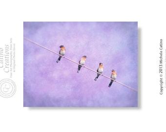 Birds on a Wire Photo, American Bluebirds Print, Purple Girl's Room Decor, Violet Sky Blue Bird Nursery Print, Bird Silhouette in Purple Sky