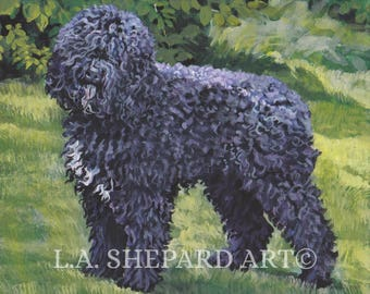 BARBET DOG art canvas PRINT of LAShepard painting 8x10""
