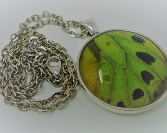 Male Green Birdwing Round Pendant Necklace (Hindwing)