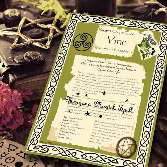 Vine Sacred Celtic Tree