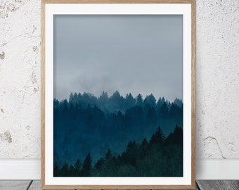 Forest print, Forest photography, Forest poster, Forest wall art, Tree print, Nature photography, Nature art, Nature print, Forest, FM-090