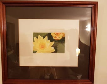 Dianne's Lilies by Linda Hill - Print 107/250