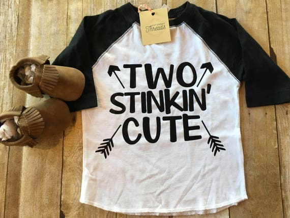 Two stinkin cute raglan shirt, boy 2nd birthday shirt, boho style boys two shirt, graphic toddler tshirt, two birthday shirt, boys clothes,
