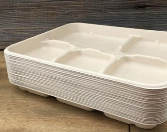 Biodegradable Retro Style Lunch Trays -15 Pack- Birthday Supply- Picnic Supply- Party Supply