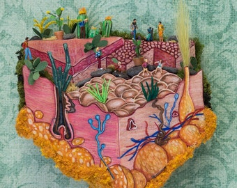 Skin Anatomy,Plants,Cactus,Conservatory, Miniature Diorama