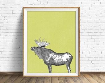 "moose, moose print, moose art, wall art, large art, large wall art, north american animals, woodland nursery, nursery wall art, art -""Moose"""