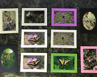 Nature photo cards. Butterfly collection Box of 10 5x7 photo cards