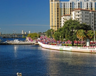 Tampa Florida Waterfront