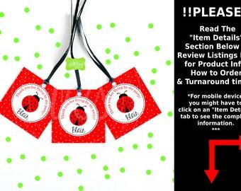 Ladybug Favor Tags - Ladybug Thank You Tags - Bug Favor Tags - Ladybug Gift Tags - Emailed or Printed Tags Available