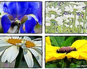Nature Photography, Flower Photos, Garden Art, Romantic, Instant Art, Wall Decor, Garden Decor, Floral Decor, Flower Photos, Flower Prints