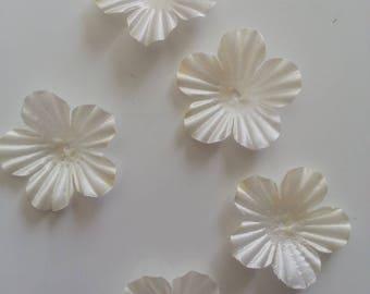 lot de 5 fleurs en tissu ivoire 35mm
