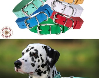 Leather Dog Collar, Puppy Collar, Small Dog Collar Medium Large Pink Blue Red Green White
