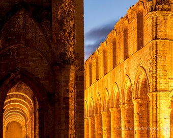 Golden Ruin, Ancient Architecture Photographic Print