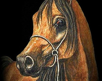 NOTE CARDS, Horse cards, Arabian horse card, Paper goods, Blank cards, Horse decor, Ellen Strope, Whoa Team, Western decor