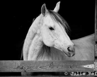Horse Photography Black and White Horse Art Print