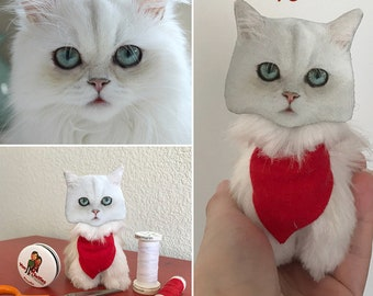 Cat Lover Gift- A Personalized Pet- Persian Ragdoll Cat, Cat Toy