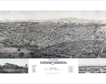 """Mexico City Mexico 1890 Panoramic Bird's Eye View Map by H. Wellge 22x13"""" Reproduction"""