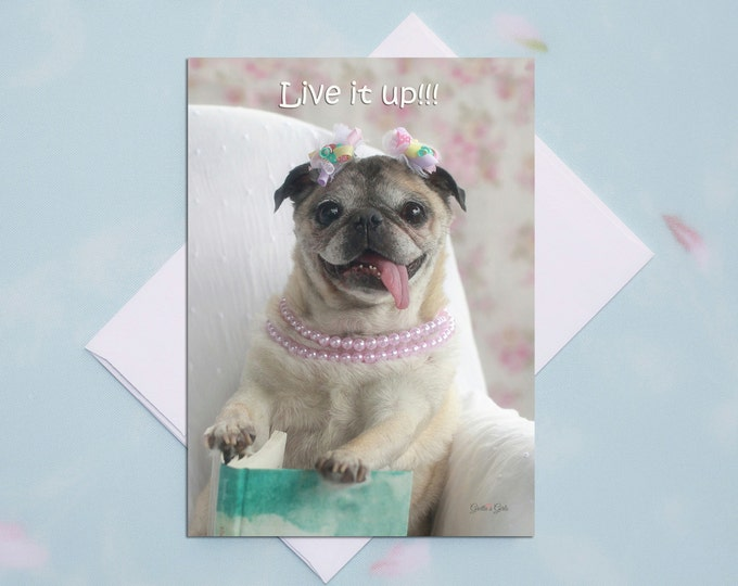 Funny Birthday Card - Live it Up - Happy Birthday Card by Grettas Girls and Pugs and Kisses