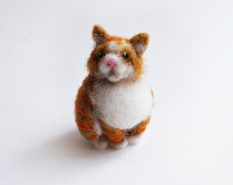 Small round ginger cat