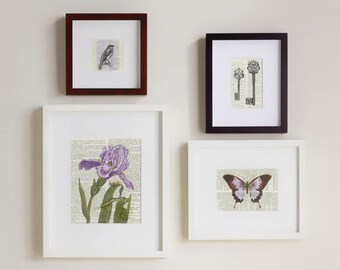 Print Set, violets and lavendar