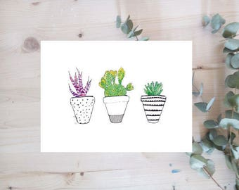 Poster - Family of CACTUS - series watercolor still - limited Edition
