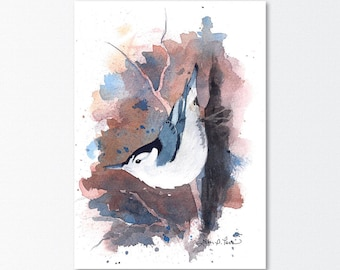Nuthatch Watercolor Print from an Original Watercolor Painting by Laura Poss - 5 x 7 inches - Bird Art, Giclee Reproduction