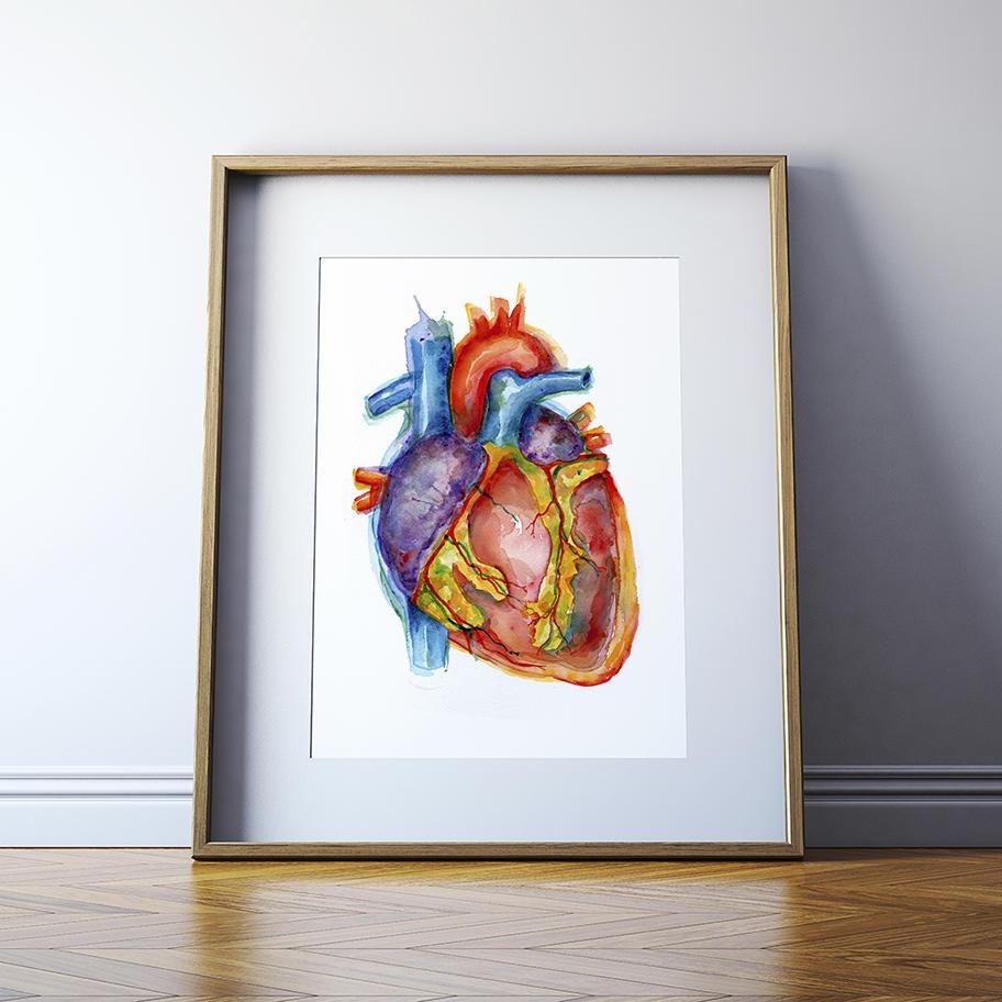 Lebendige anatomischen Herz Aquarell Kunstdruck Anatomie