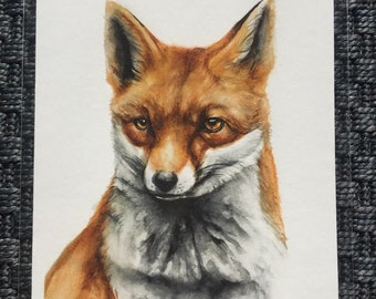 Watercolour woodland fox giclee art prints, nursery woodland  animal art A5