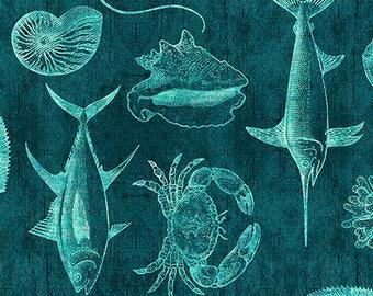 Ocean Oasis, Fish Fabric, Fish Blueprint - Dan Morris for Quilting Treasures - 25831 Q Dark Lagoon (Turquoise) - Priced by the Half Yard