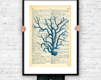Coral dictionary wall art print-blue coral poster-coral art print-coastal wall art-beach art-nautical decor-sea life art-NATURA PICTA-NPS015