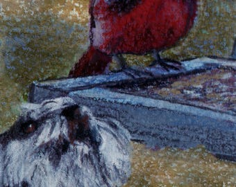 original art drawing aceo red cardinal bird feeder barking schnauzer dog