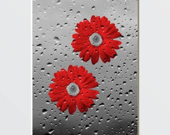 Bathroom Red Gray Pictures, Daisy Flowers, Red Grey Bath, Powder Room Decor, Red Picture, Matted Wall Art